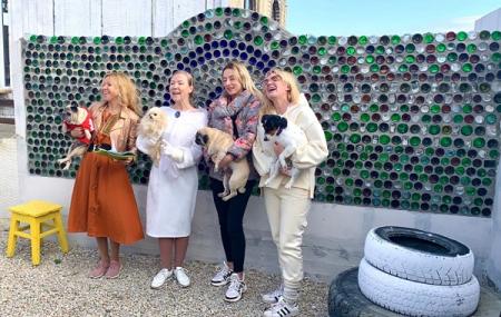 С феодосийской свалки в интерьер: Музей мусора представит экспонаты на Межрегиональной мебельной выставке в Симферополе